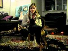 Embedded thumbnail for The Puppy Project Lesson 10: Teaching Tricks and How They Can Help In Day to Day Life