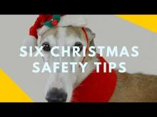 Embedded thumbnail for Six Safety Tips for the Holiday Season