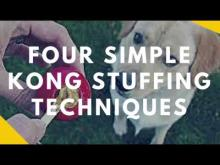 Embedded thumbnail for Four Simple Ways to Stuff A Kong So It Lasts