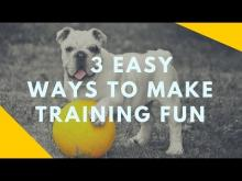 Embedded thumbnail for Three Easy Ways to Make Training Fun