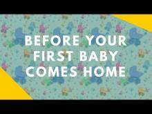 Embedded thumbnail for Preparing Your Dog Before Your First Baby Arrives