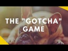 Embedded thumbnail for The Gotcha Game - Teaching Your Dog To Love Being Caught