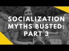 Embedded thumbnail for Socialization Myths Busted: Part 3
