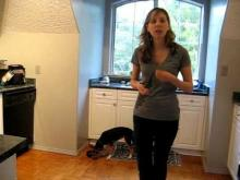 Embedded thumbnail for The Puppy Project Lesson 13: Food Bowl Exercises - Approaching the Bowl (Part 1)
